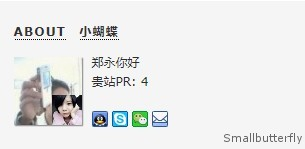 欢迎访客之显示对方网站PR